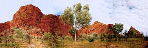 le gâchis gâche l'Australie occidentale Photo stock