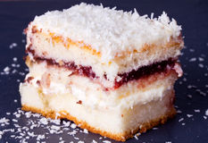 Le gâteau avec arrose de la noix de coco Photo libre de droits