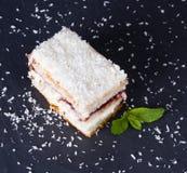 Le gâteau avec arrose de la noix de coco Image stock