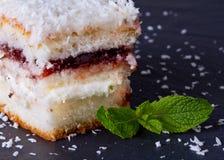 Le gâteau avec arrose de la noix de coco Images stock