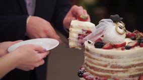 Le gâteau de célébration de mariage dans le style rustique avec des hiboux figure sur le dessus clips vidéos