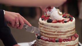 Le gâteau de célébration de mariage dans le style rustique avec des hiboux figure sur le dessus banque de vidéos