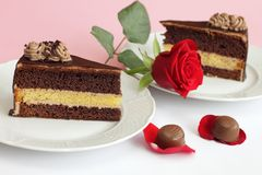 Le gâteau de chocolat avec s'est levé Photos stock