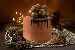 Le gâteau de fête pose la crème de chocolat Images libres de droits