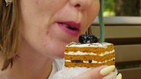 Le gâteau femelle de consommation se repose sur le banc de Brown en parc clips vidéos