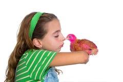 Le galline del selezionatore scherzano l'agricoltore del proprietario di ranch della ragazza con i pulcini del pollo Fotografie Stock Libere da Diritti