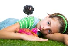 Le galline del selezionatore scherzano l'agricoltore del proprietario di ranch della ragazza con i pulcini del pollo Fotografia Stock Libera da Diritti