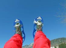 Le gambe dell'alpinista con le racchette da neve per le escursioni nella montagna Immagini Stock Libere da Diritti