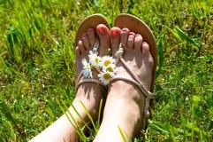 Le gambe della donna sull'erba fotografia stock libera da diritti