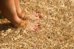 Le gambe femminili ben fatto si chiudono su Fotografie Stock