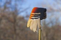 Le gant de l'enfant tricoté perdu Photographie stock