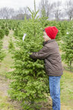 Le garçon étreignant l'arbre de Noël parfait a trouvé à la ferme d'arbre Image stock