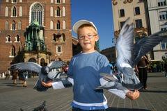 Le garçon alimente les oiseaux Photo libre de droits