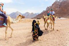 Le garçon arabe roule des touristes sur un chameau photographie stock