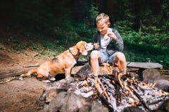 Le garçon avec le chien de briquet ont un pique-nique près du feu de camp sur la clairière de forêt Image libre de droits