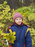 Le garçon avec des lames d'automne Images libres de droits