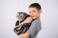 Le garçon avec l'écossais plient le chat d'isolement sur le fond gris Amitié d'animal familier d'enfant Photographie stock