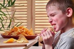 Le garçon avec l'appétit mange un hot-dog délicieux L'enfant affamé déchire volontairement ses dents et mâche le hot dog Aliments images libres de droits