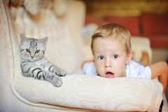 Le garçon avec un chaton Photo stock