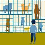 Le garçon choisit un chien dans un appartement de refuge pour animaux Dans le style minimaliste Vecteur de bande dessinée illustration libre de droits