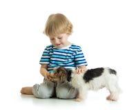 Le garçon d'enfant alimente le chiot de chien d'isolement sur le blanc Photos libres de droits