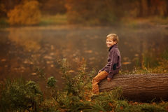 Le garçon dans l'arbre Image libre de droits