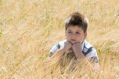 Le garçon dans le domaine d'automne photos libres de droits
