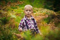 Le garçon dans les bois Images stock