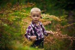 Le garçon dans les bois Images libres de droits