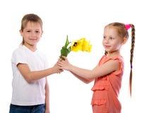 Le garçon donne à une fille des tulipes de jaune Photo stock