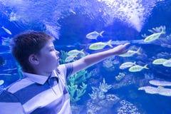 Le garçon en Oceanarium considère des poissons Photographie stock