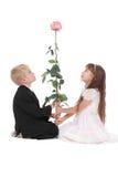 Le garçon et la fille regardent une rose Images libres de droits