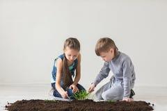 Le garçon et la fille sont jetés l'usine dans le sol au jour de terre Photo stock