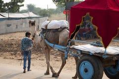 Le garçon et le chariot Images libres de droits