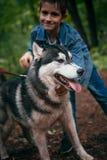 Le garçon et le sien poursuivent le chien de traîneau sur le fond des feuilles au printemps Photos stock