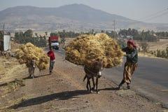 Le garçon et les transports de femme font les foins avec un âne Photo libre de droits