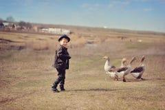 Le garçon frôle des oies Photos stock