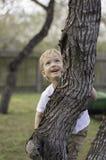 Le garçon grimpe à l'arbre Images libres de droits