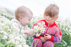 Le garçon heureux d'enfant en bas âge donne aux fleurs sauvages la petite fille Image stock