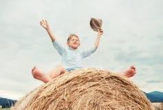 Le garçon heureux s'assied au-dessus de la grande meule de foin de roulement images libres de droits