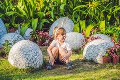 Le garçon mignon de petit enfant avec des oreilles de lapin ayant l'amusement avec les oeufs de pâques traditionnels chassent, de Photos stock