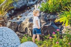 Le garçon mignon de petit enfant avec des oreilles de lapin ayant l'amusement avec les oeufs de pâques traditionnels chassent, de Photos libres de droits