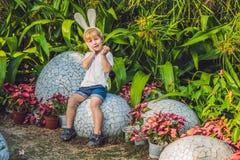 Le garçon mignon de petit enfant avec des oreilles de lapin ayant l'amusement avec les oeufs de pâques traditionnels chassent, de Photo stock