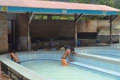 Le garçon non identifié nettoie des piscines chez le Hot Springs Photo libre de droits