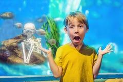 Le garçon a obtenu le squelette et le piranha effrayés dans un aquarium photo libre de droits