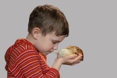 Le garçon regarde doucement l'escargot images stock