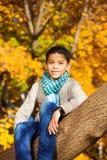 Le garçon s'asseyent sur l'arbre Photo stock