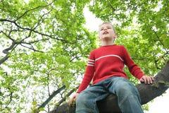 Le garçon s'assied sur l'arbre Images libres de droits