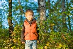 Le garçon se tient dans la forêt d'automne parmi les arbres Photos stock