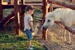 Le garçon sur le ranch Images libres de droits